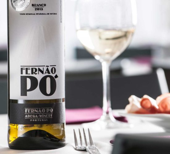 Fotografia de vinho by Wine & Shine - 9