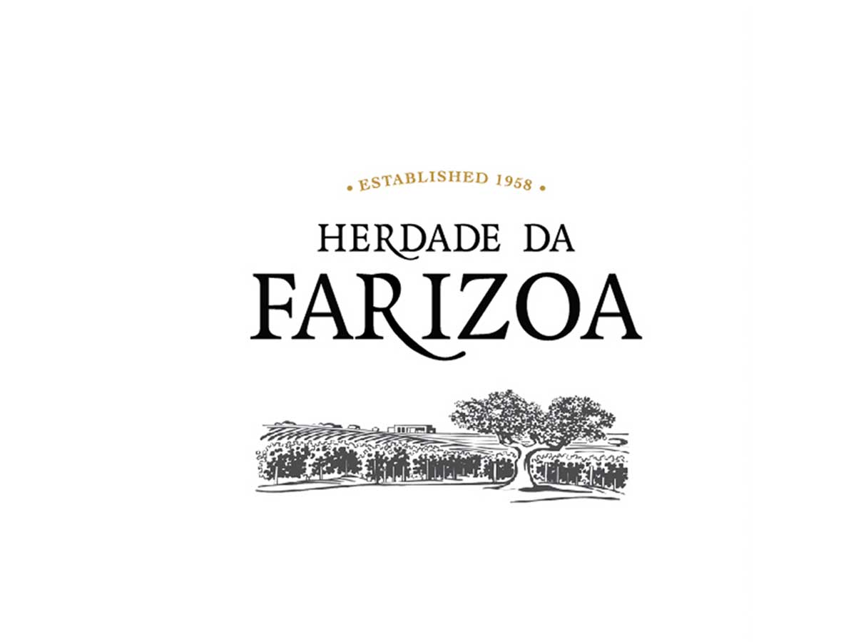Logotipo e branding de vinho by Wine & Shine - 3