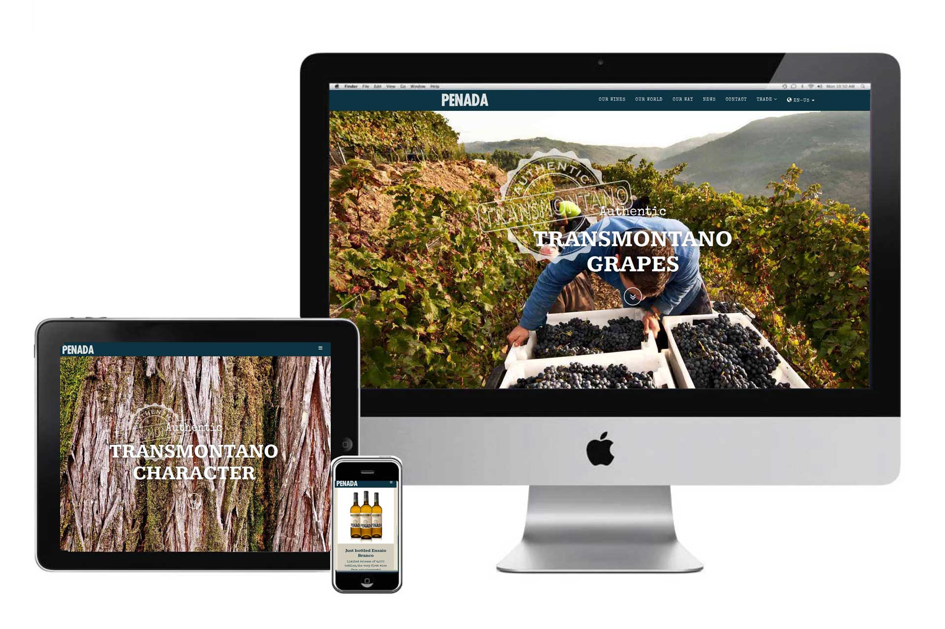 Website produtor de vinho by Wine & Shine - 2